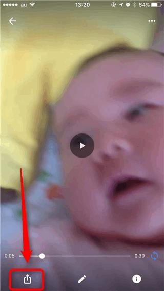 Googleフォトから動画をiPhoneのカメラロールに保存する方法